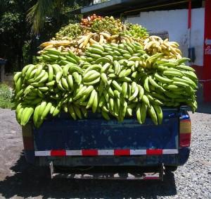 crudista banane