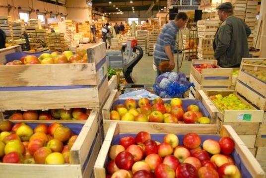frutta ingrosso