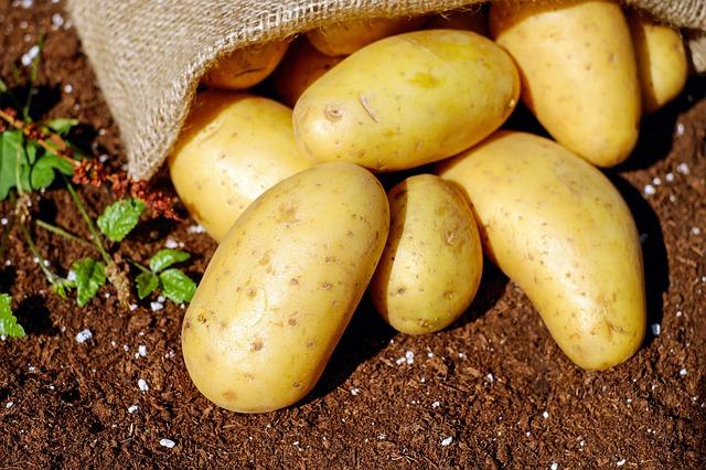 Alle Prese con Problemi di Peso e Salute, Scopre la Dieta delle Patate